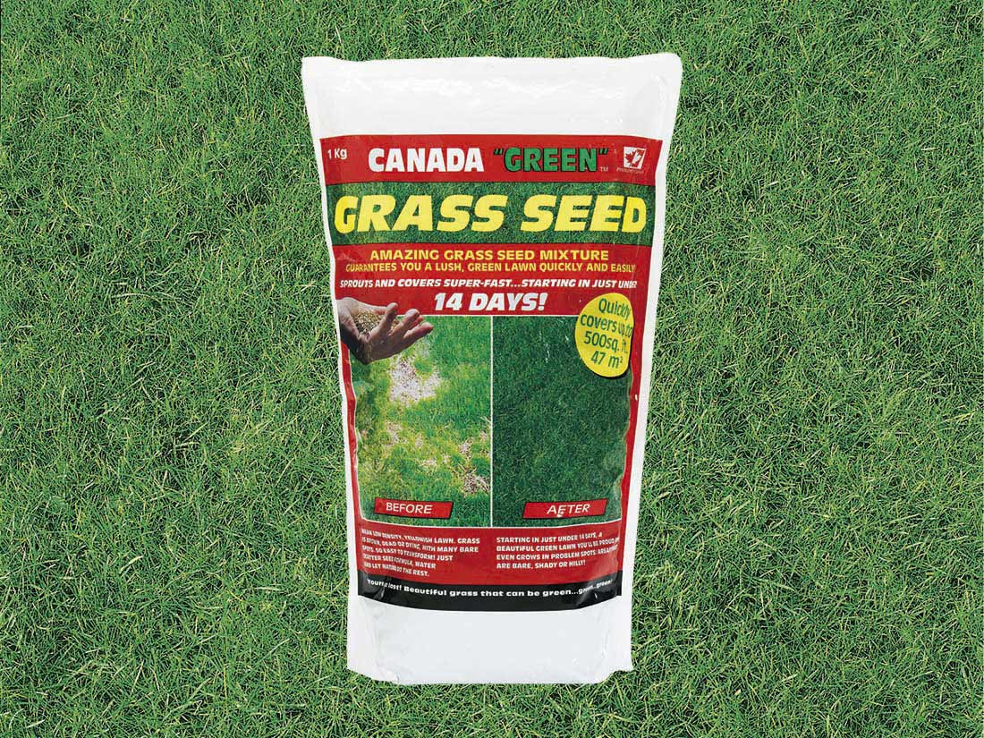 1kg Canada Green Grass Seed
